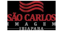 logo-sci-ib